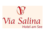 www.via-salina.at Logo